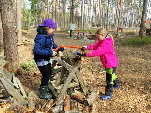 Year 4 Goes to Naturskolan